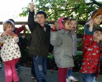 Nature Walk for World Tree Day 2015