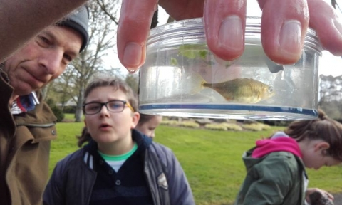 Pond Dipping with Geoff Hunt