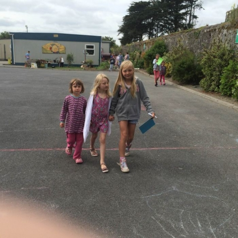Mini-Beast Hunt: Junior infants and Fourth Class