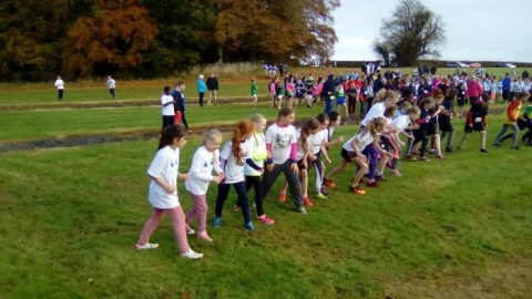 Limerick Schools Cross Country 2016