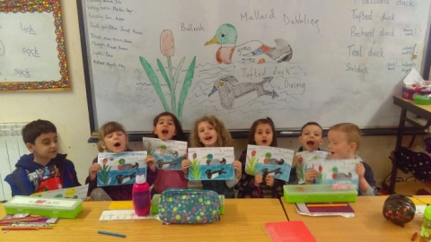 Aine's Class Learn About Ducks